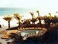 1982-Fuerteventura-1.JPG