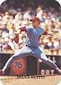 1987 Rob Broder Rookies Bruce Ruffin.jpg