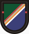 1 Bn 75 Ranger Regiment Beret Flash.PNG