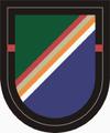 1 Bn 75 Ranger Regiment Beret Flash.PNG