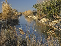 2. Séquia de Sant Llorenç (Parc Natural de l'Albufera, País Valencià).jpg