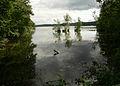2008-08-09-werbellinsee-100.jpg