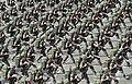 2013.10.1 건군 제65주년 국군의 날 행사 The celebration ceremony for the 65th Anniversary of ROK Armed Forces (10078382943).jpg