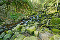 2014-04-09 16-02-11 cascade-savoureuse-lepuix.jpg