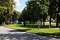 2021-09-04 Zistersdorf Park Moosteich.jpg