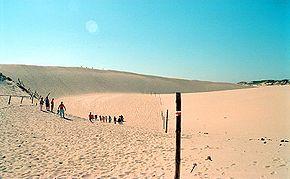 Polish coast dunes.