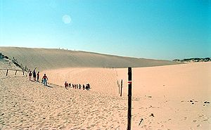 Geography of Poland - Dunes in Słowiński National Park