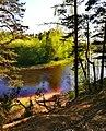 3385. Molodezhnoe. Chyornaya River.jpg