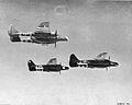 422d Night Fighter Squadron - P-61 Black Widows.jpg