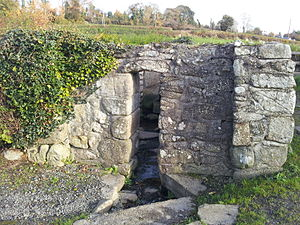 St Mullin's - St. Moling's Well