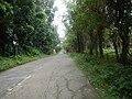 9501Poblacion Del Carmen, Alaminos, Road 23.jpg