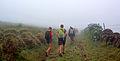 Açores 2010-07-20 (5068659646).jpg