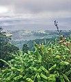 Açores IMG 1165 (35867065720).jpg
