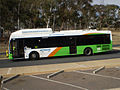ACTION bus358.jpg