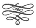ALPP - Graphic 5.png