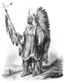 A Mandan Chief.png
