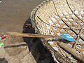 A coracle and oar 1.JPG