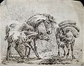 A horse and its foal are looking at a pack-mule. Etching by Wellcome V0021813.jpg