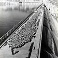 A local shepherd taking his flock across Grand Coulee Dam. (26850133135).jpg