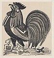 A rooster MET DP874465.jpg