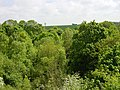 Above the tree tops - geograph.org.uk - 10187.jpg