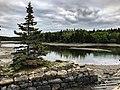 Acadia National Park (e31e2a5e-3998-4b09-be68-cb958b3eda0f).jpg