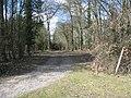 Access to Dicken's Lane plantation - geograph.org.uk - 1740121.jpg