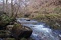 Afon Nedd Fechan - geograph.org.uk - 383872.jpg