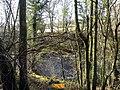 Afon Tywi-River Towy - geograph.org.uk - 1132545.jpg