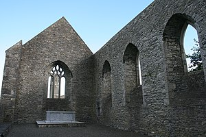 Abbey of Aghaboe - Image: Aghaboe, County Laois geograph.org.uk 1825428