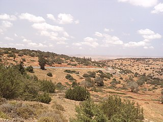 Al Marj escarpment6.JPG