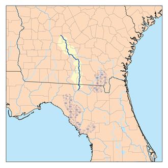 Alapaha River - Image: Alapaharivermap