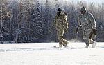 Alaska Army National Guard builds bridges … of ice 150125-Z-QK839-611.jpg