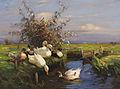 Alexander Koester Sieben Enten am Graben.jpg