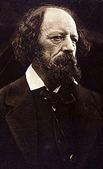 Carbon print of Alfred, Lord Tennyson, 1869, printed 1875/79