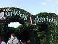 Alice's Curious Labyrinth.jpg