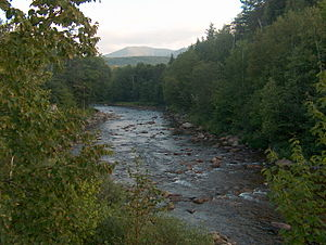 Ammonoosuc River - The Ammonoosuc River near Twin Mountain, New Hampshire