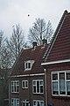 Amsterdam, janeiro de 2011 - panoramio (1).jpg