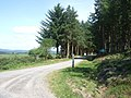 An access to Durris Wood - geograph.org.uk - 891649.jpg