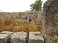 Ancient Corinth Ruins (5986590785).jpg