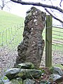 Ancient Gate Post - geograph.org.uk - 309577.jpg