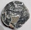 Anomia sp. (fossil jingle shell) (Topsail Island, North Carolina, USA) 1.jpg