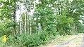 Ansicht-NSG-Bewerlohmoor-2.jpg