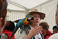 Ara ararauna -Lambeth Country Show -London-6c.jpg