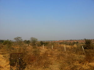 Delhi Ridge - Aravalli Biodiversity Park, Gurgaon