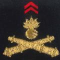 Attribut fourreaux-artillerie 8 RA.png