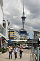 Auckland Sky Tower (8088771423).jpg