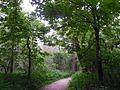 Auenwald-bei-Mühdorf-DSCN0322-WDPA-555522076-Muehldorf-BR-48.2321-LG-12.5253.jpg