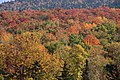 Autum Colours New Hampshire (6234617585).jpg