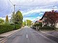 Avenue de la Foretaille à Pregny-Chambésy.jpg